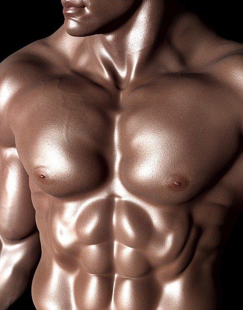 Est-ce on peut grandir en faisant de la muscu ?