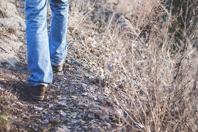 Quel est la meilleur marque de jeans pour homme ?