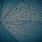 Où trouver un parapluie pas cher ?